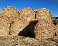Rollos 100 % Alfalfa Corte Febrero 2020
