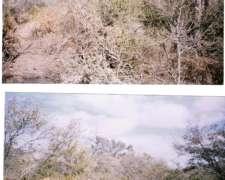 Lugones, Sgo. del Estero, 2000 Has Monte. Campo en Venta