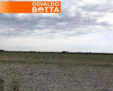 100 HA. Agrícolas Leones Córdoba