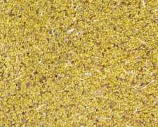 Semilla De Alfalfa Sequel