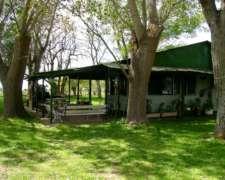 Campo En Venta 345 Hectáreas En Punta Indio