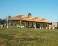 Quincho De Paja -sombra Para Animales -estructura Puesta