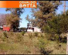 300 Has Bayauca (lincoln) Buenos Aires