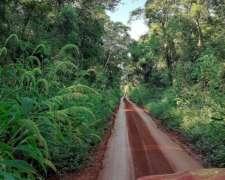 Regalo Gran Oportunidad Espectacular Campo Forestal-ganadero