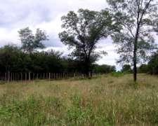 Campo Ganadero Sobre Ruta 34