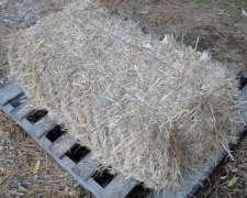 Fardos de Pastura Mezcla