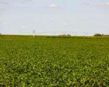 Vendo Estancia 30.000 Hectareas En Provincia De Santa Fe