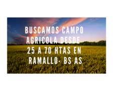Buscamos Campo Agricola en Ramallo BS AS.