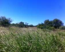 Campo En Venta Mixto 1704 Has