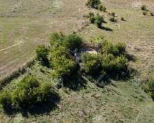 Campo Ganadero 137 Has - Ideal Tambo - Sobre Ruta - Ranchos