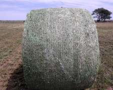 Rollos de Alfalfa muy Buenos