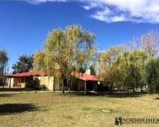 San Rafael, Mendoza, 4 Ha, Vivienda Permanente, Viñedos.
