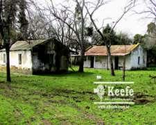 Campo en Venta. Magdalena. BS Aires. 78 Has. Ganadero