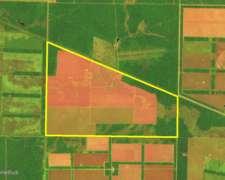 Ch0021 1300 Has Venta Agrícola Chaco