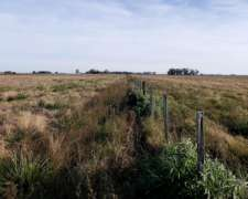 Campo Agrícola de 75 Has. en Entre Ríos