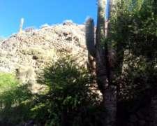 Finca en Humahuaca a 10 km Camino a Ocumazu