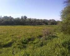 Campo 410 Hectareas. a Desarrollar.
