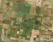 Excelente Campo Agrícola en Soutomayor