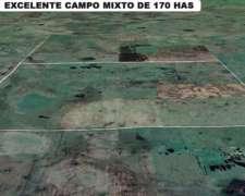Excelente Campo Mixto Agrícola en Rauch. Oportunidad