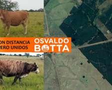 Unico: 3000 Has en Arrendamiento, Corrientes, Sobre Ruta