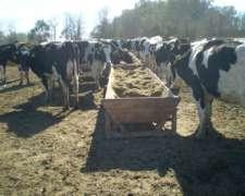 Comedero Tambo Movil Agraso Madera Batea 1,10m X 5m 20 Vaca