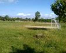 Administracion Campo - Rrhh - Finanzas