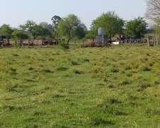 Campo Ganadero, Sobre Ruta Asfaltada