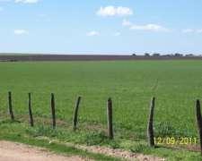 110 Hectareas de Campo Agricolas