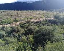 Campo Rural y Montaña