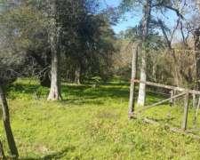 Campo Ganadero en Rivadavia Banda Norte