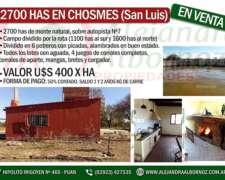 Alejandra Albornoz Vende en San Luis Chosme