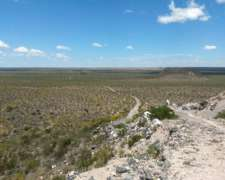 Campo 579 Ha Costa Río Colorado, Puelen,la Pampa. para Riego