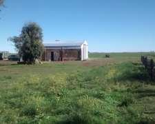 Vendo Campo en Jacinto Arauz 644 Hectáreas