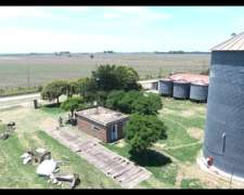 Predio, Planta Silos 2.000tt, Granja 30.000 Pollos, Casas