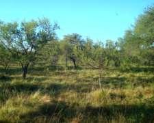 1400hectareas Ganaderas en Mojones Norte