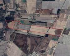 Sl0121 270 Has Agricola Riego Chacabuco San Luis