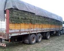 Tenemos los Mejores Fardos de Alfalfa al Mejor Precio