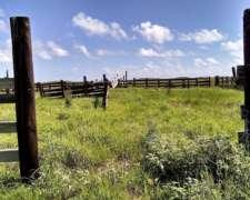 Campo Ganadero a 50 MIN de Resistencia, Chaco