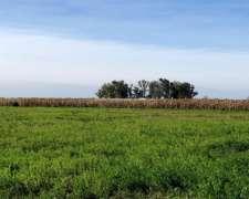 230 Has Agrícolas en Hersilia