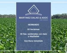 Hernando - 63 Has. Agricolas