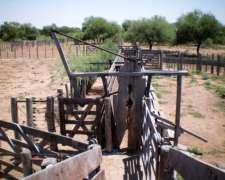Arrendamiento con Propuesta D Inversión Campo Ganadero Cría