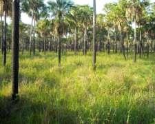 Monte Lindo - Paraguay
