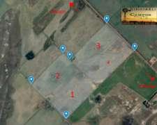 Pehuajo 114 Has Agricolas Buen Precio