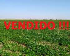 En Venta, 200 Has, Col. Santa Teresa, la Pampa.-
