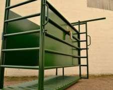 Casilla De Pesaje Para Vacas