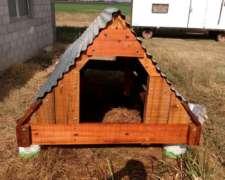 Parideras de Cerdos para Sistema a Campo
