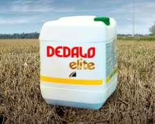Dedalo Elite Herbicida - 2,4 D Ácido 30% ME
