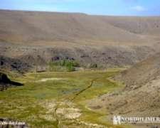 Campo En Venta En Bajo Caracoles. 44671 Has. Ganadero.