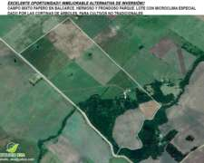 Excelente Campo Mixto Agricola, Balcarce,. BS AS. Consultar
