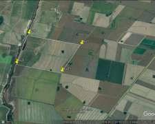 330 Agricolas en Armstrong Mayormente Suelo 1